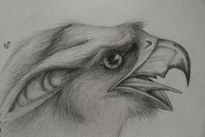 Gryphon Portrait by hypnocampus