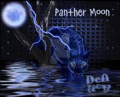 A PANTHER MOON by HumbleLuv