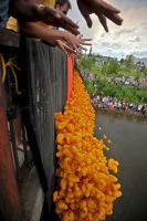 The Start of the Rubber Duck Race, Fairbanks by fourthwall
