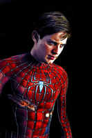 Spider-Man by donvito62