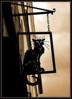 Le Chat Noir by Lady-Vetinari