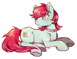 Teal and red pony by Mi-eau