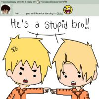 Answer 40: Stupid Bro by EnglandReacts
