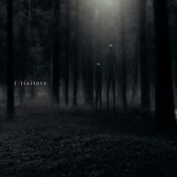 V-isitors by cruelpicture