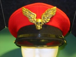 M. bison hat with hat pin by 2006chaos