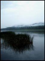 Dreary Waters. by Bleezer