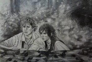 sam and frodo by VEEDUBBZ
