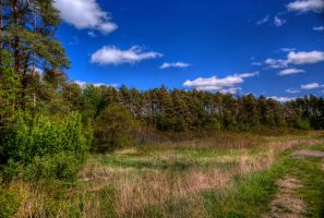 Raw to HDR with polarizer? by Qels