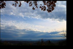 view of today by nimblex