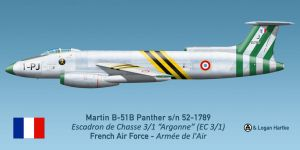 French Air Force Panther 1 by talos56