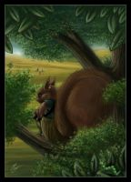 WatchSquirrel by Redwall-Fans