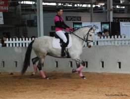 Dressage Horse Stock 7 by lee-mare
