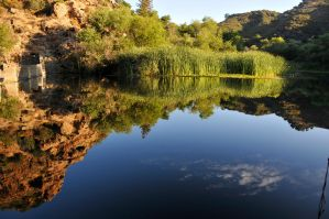 Malibu Creek Pond by AndySerrano