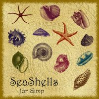 SeaShells Brushes for Gimp by Lucida