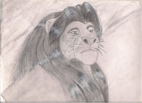 King Mufasa Before and After by devilswillbeburned12