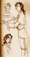 Tamino sketches by squonkhunter