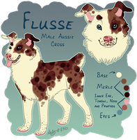 Flusse Reference Sheet by Aelyaniara