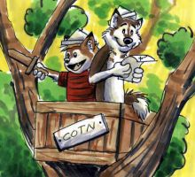 Another Year of Adventure C-H by Nashoba-Hostina
