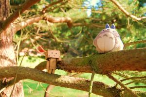 Danbo meets Totoro ........... by Yuffie1972