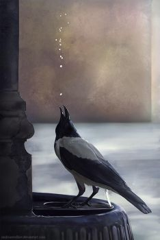 Crow and Water by MaksimVolkov
