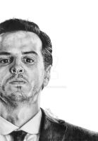 The Consulting Criminal by Amy221B