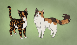 Tortie Sibs by AnnMY