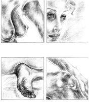Nude Studies by dlemelin
