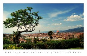 Florence by Svision