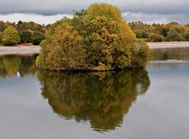 Early Autumn I by DundeePhotographics