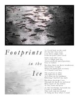 Footprints in the Ice ::Poem:: by Pyrochimp