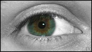 Yet another bnw color eye by theix