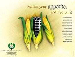 Radio Pakistan Press Ad by creavity