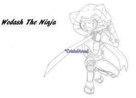 Wodash The Ninja by CristalArual