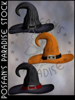 Wizard/Witch Hats 004 by poserfan-stock
