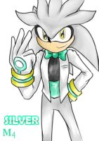 The Hedgehog in White by Marini4