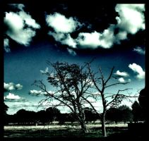 The Park's Starkness by LadyShamisen