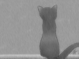 Desktop Version: Kitty in Rain by pharaohatemuYouTube