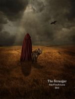 The Stranger by StarfireArizona
