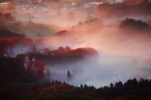 autumn colors by Bookriver