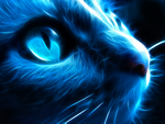 Night Cat by l3viathan2142