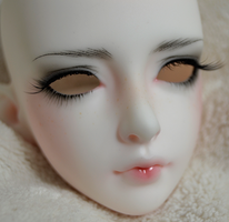 LUTS Verna Face-up by Distractus