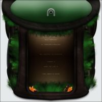 Interface Practice 2-Wild 1.2 by messinmotion