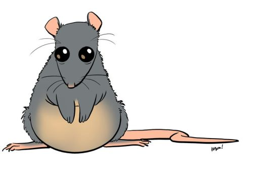 Rolly Polly Ratface! by MechaLissa
