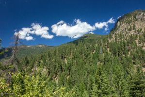 Forested Mountain by RhiskandPeril