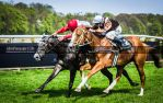 Horse Racing 357 by JullelinPhotography
