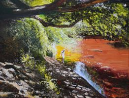 Waters Edge by NorthumbrianArtist