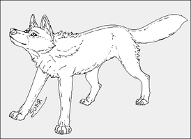 Wolf Looking Up Lineart by Susiruhtinatar