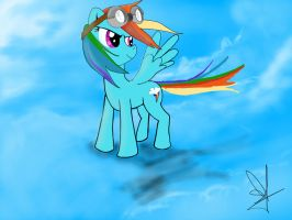 Rainbow Dash :D by Doggie999