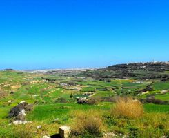 Terraced Fields, Dwejra, Malta by floramelitensis