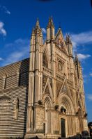cathedral by Neurologics